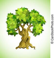 grönt träd, ek, som, ekologi symbol