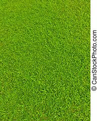 grøn fodbold, felt græs