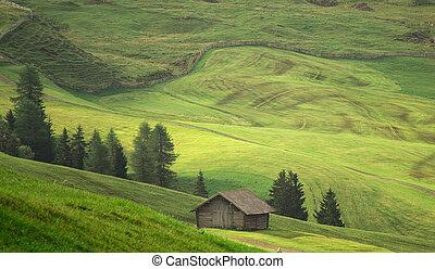 grønne, felter, aerial udsigt, foran, høst, hos, sommer