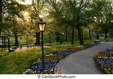 grønne, parker, ind, polen