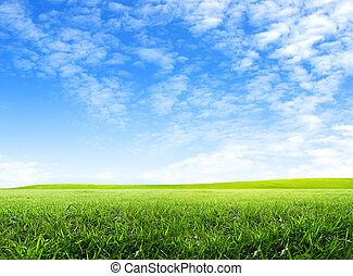 grønnes felt, og, himmel blå, hos, hvid sky