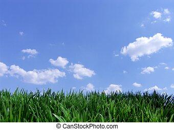 grønnes græs, og blå, himmel
