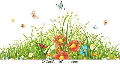 grønnes græs, og, blomster