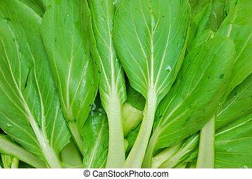 grønnes løvrige grønsager