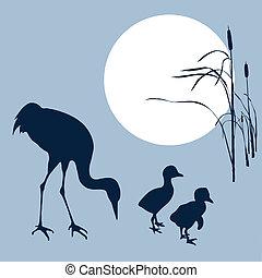 grúa, con, cría ave, silueta, en, solar, plano de fondo, vector, ilustración