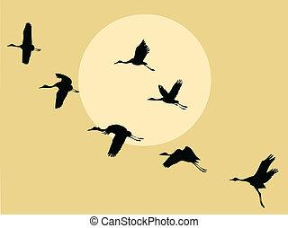 grúa, silueta, en, solar, plano de fondo, vector, ilustración