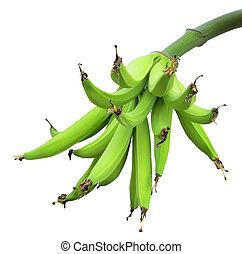 grün, bananen