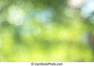 grün, bokeh, fokus, hintergrund