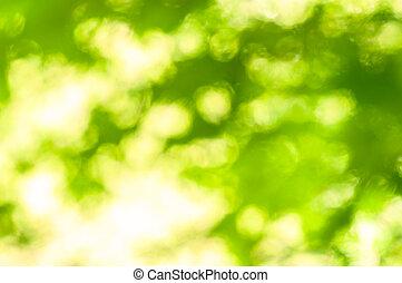 grün, Fokus, hintergrund, heraus