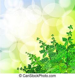 grün, fruehjahr, hintergrund, mit, gras, und, blurry, licht