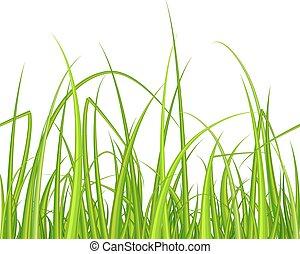 grün, grass., pattern., seamless