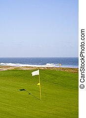 grün, in, a, golfplatz