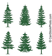 grün, kiefer bäume, sammlung