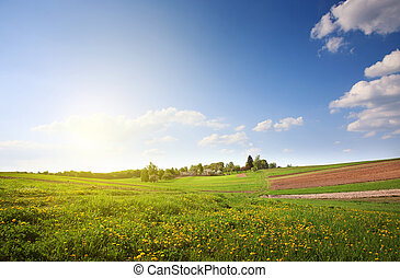 grün, landschaftsbild, Natur