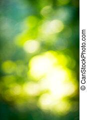 grün, natürlich, hintergrund, von, fokus, wald, (bokeh)