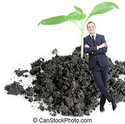grün, pflanzenkeim