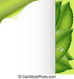 grüne blätter, und, papier