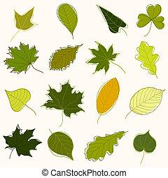 grüne blätter, von, verschieden, bäume