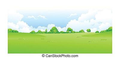 grüne landschaft, mit, blauer himmel