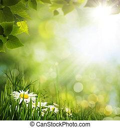 grüne wiese, mit, gänseblumen, flowes, natürlich, hintergruende, für, dein, design