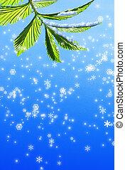 grüner abriß, blatt, schneeflocke, hintergrund