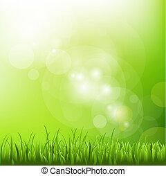grüner hintergrund, mit, verwischen, und, gras