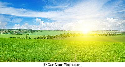 grünes feld, blau, himmelsgewölbe, mit, licht, clouds., oben, der, horizont, gleichfalls, a, hell, sunrise., breit, photo.