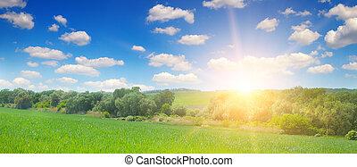 grünes feld, blau, himmelsgewölbe, mit, licht, clouds., oben, der, horizont, gleichfalls, a, hell, sunrise., breit, foto