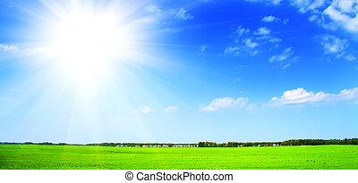 grünes feld, blau, himmelsgewölbe