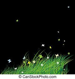 grünes feld, mit, vlinders, sommer, hintergrund