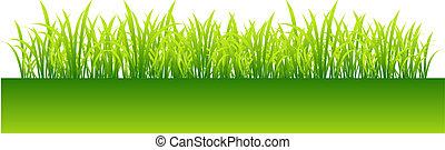 grünes gras, design, dein, fruehjahr