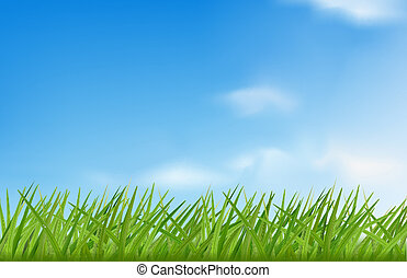 grünes gras, gegen, der, himmelsgewölbe, hintergrund.,...