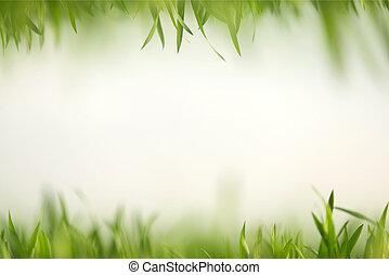 grünes gras, in, künstlerisch, zusammensetzung