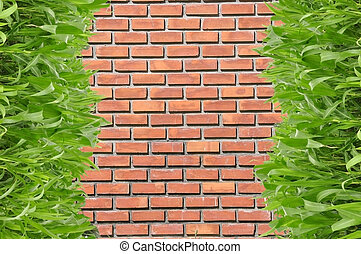 grünes gras, vor, brickwall