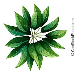 grünpflanze, luftblick
