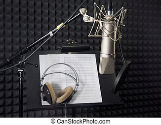 grabación, micrófono, condensador, habitación, vocal