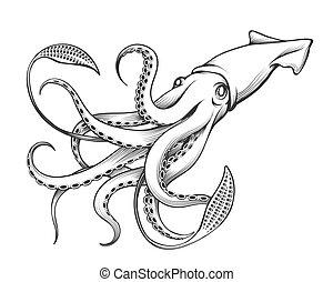 grabado, gigante, calamar, ilustración