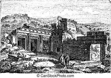 grabado, libia, vendimia, shahhat, cyrene, ruinas