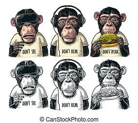 grabado, no, sabio, ver, tres, speak., vendimia, monkeys., ...
