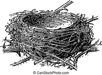 grabado, vendimia, nido, blackcap, atricapilla, sylvia, o