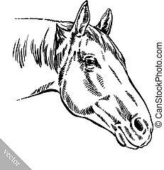 grabar, tinta, empate, caballo, ilustración