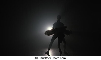 Graceful ballerina and her male partner dancing elements of classical or modern ballet in dark with floodlight backlight. Couple in smoke on black background. Art concept