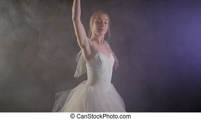 graceful ballerina in white dress dancing elements of...