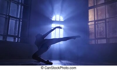 Graceful girl dancer practicing contemporary in moonlight, silhouette. Slow motion