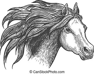 Graceful running appaloosa horse vintage icon - Sketch of...