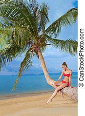 Graceful woman sitting on palm tree