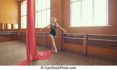 Graceful young ballerina doing a workout in a studio