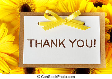 gracias card, con, amarillo, gerberas