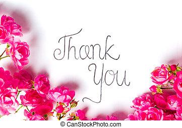gracias, nota, con, rosas rosa, blanco