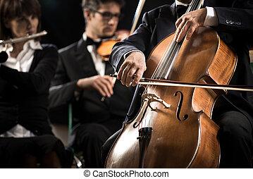 gracz, szczelnie-do góry, symfonia, wiolonczela, orchestra: